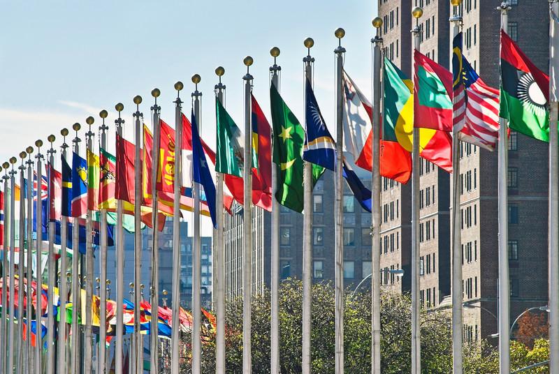 8 Конгресс  ООН в Женеве